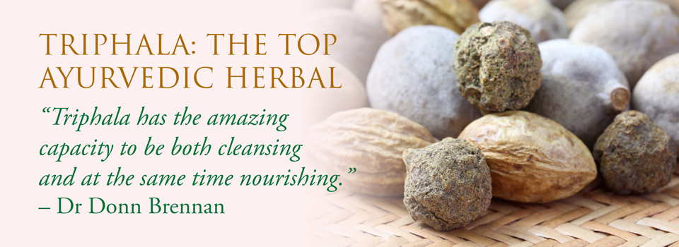 Videos: Dr Donn Brennan talks about Triphala the top Ayurvedic herbal