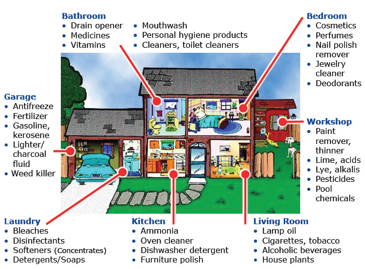 Potential household poisons by room