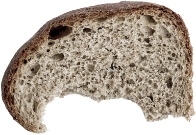 Dried-up crust of bread