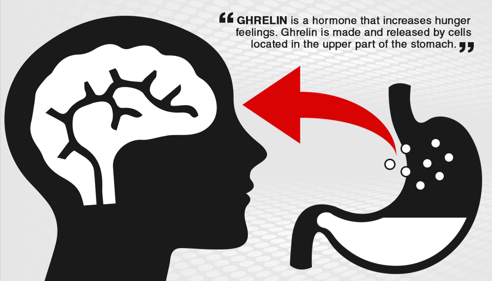 ghrelin, stomach and brain