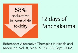 reduction in pesticide toxicity through Panchakarma