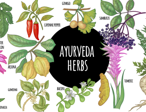 Six famous herbals of Ayurveda