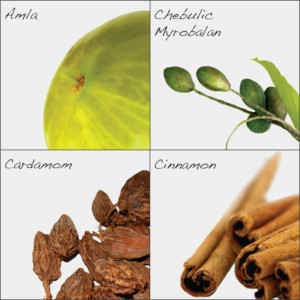 Herbs in Amrit Nectar paste (MA4)