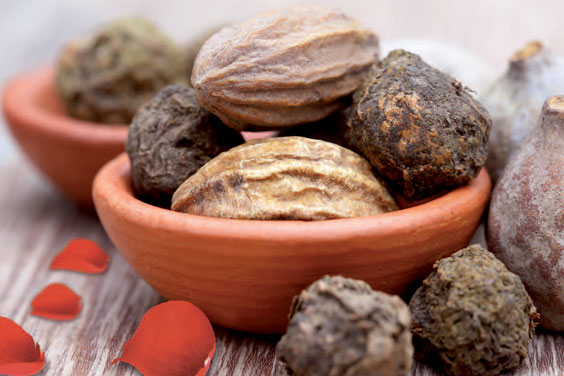 Triphala is a traditional Ayurvedic formula made from three Indian fruits: Amalaki, Bibhitaki, and Haritaki.