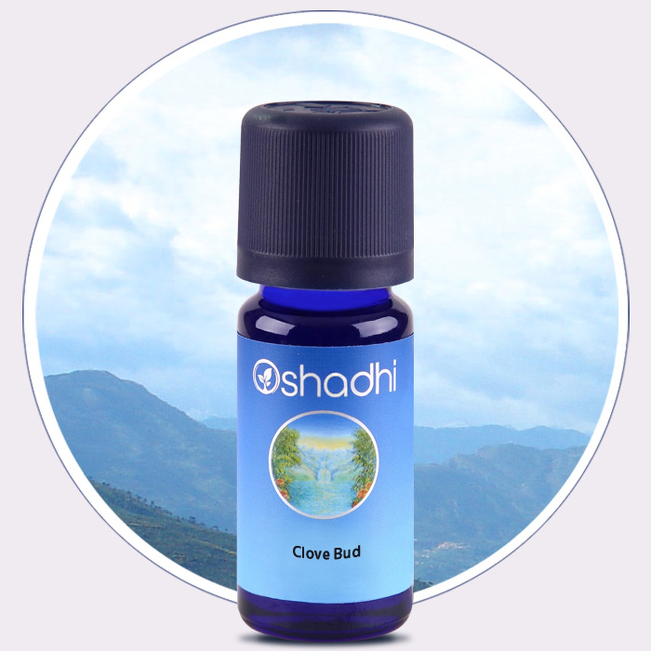Clove Bud Essential Oil (Oshadhi) 10ml