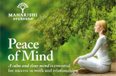 Peace of Mind leaflet