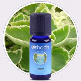 Ajowan Essential Oil (Oshadhi) 10ml