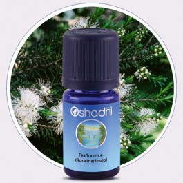 Tea Tree m.e. [Rosalina] Linalol (Oshadhi) 5ml