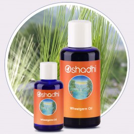 Wheatgerm Oil (Oshadhi) 30ml