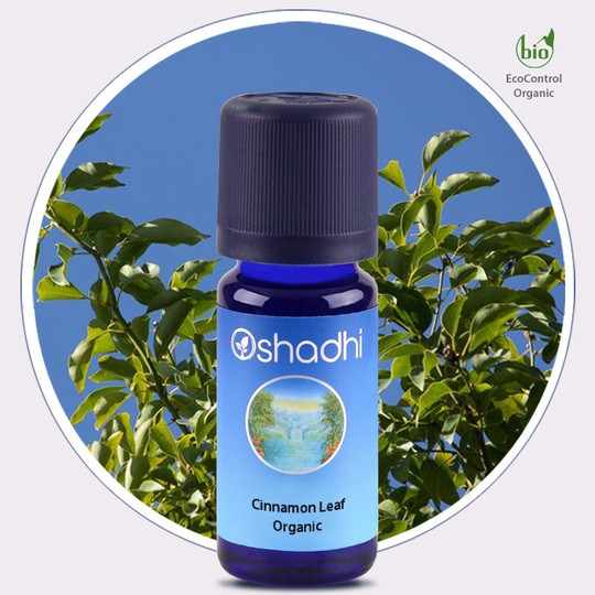 Cinnamon Leaf Organic (Oshadhi) 10ml