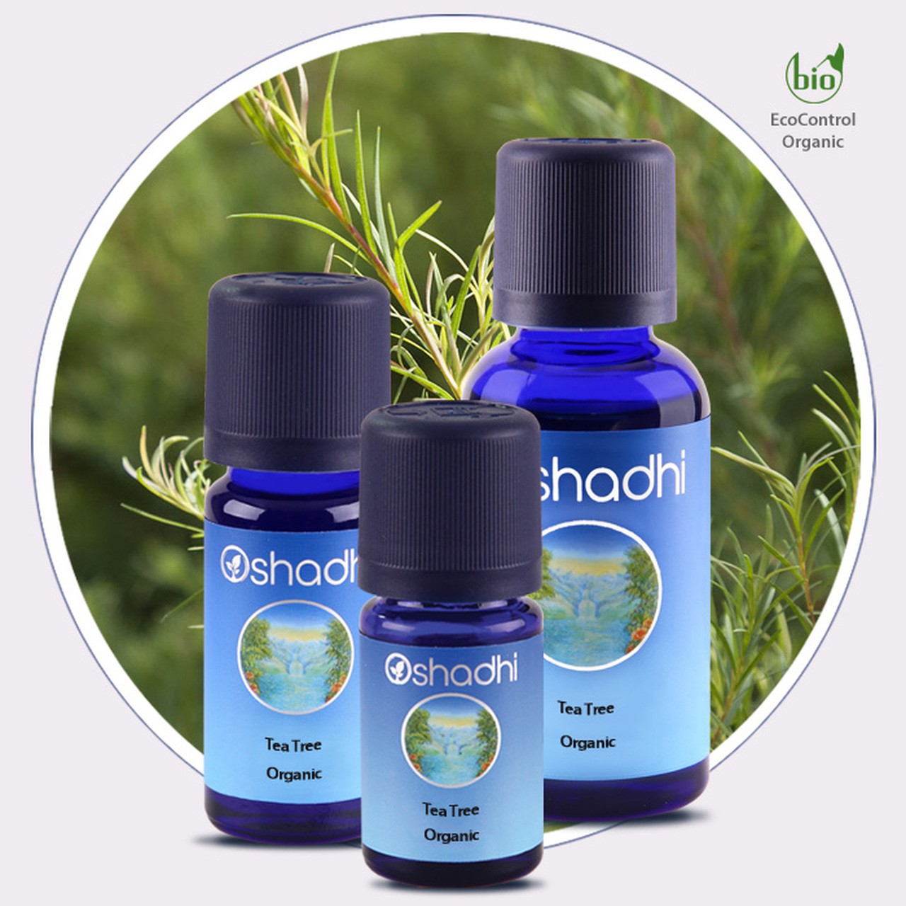Tea Tree Organic Essential Oil (Oshadhi) 10ml