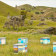 New Zealand Manuka Honey Bee Hives