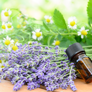 Essential oils from roots, bark, leaves and flowers