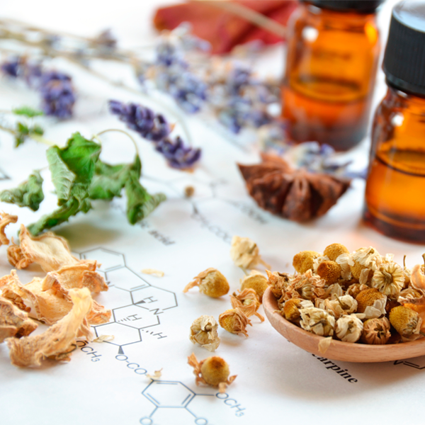Essential Oils are highly concentrated extracts of medicinal plants