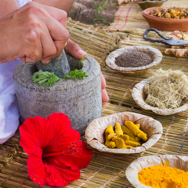 Preparing traditionally used Ayurvedic herbs