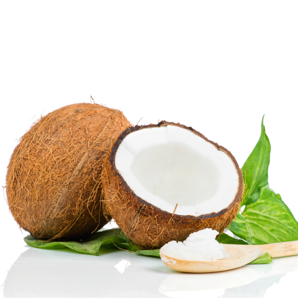 Coconut and coconut oil illutration