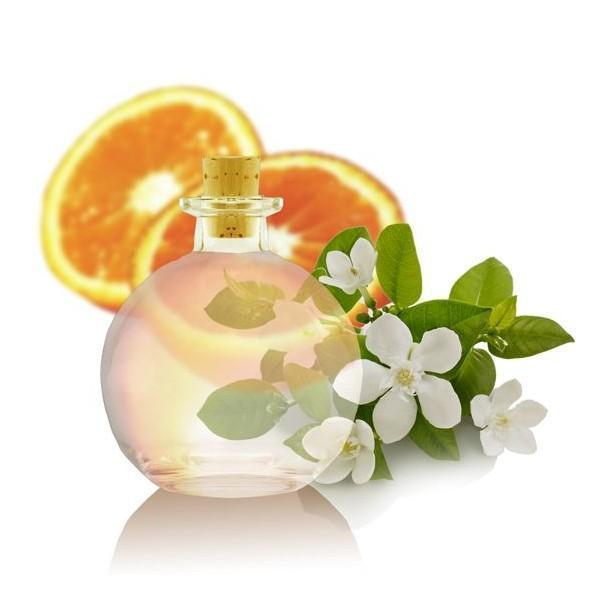 Orange Blossom Water Illustration