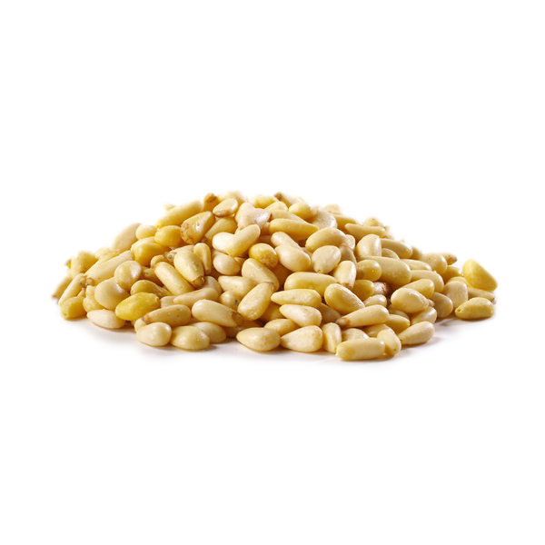 Raw Pinenuts