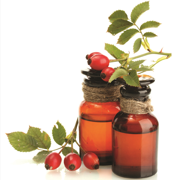Rose Hip Seed Carrier Oil