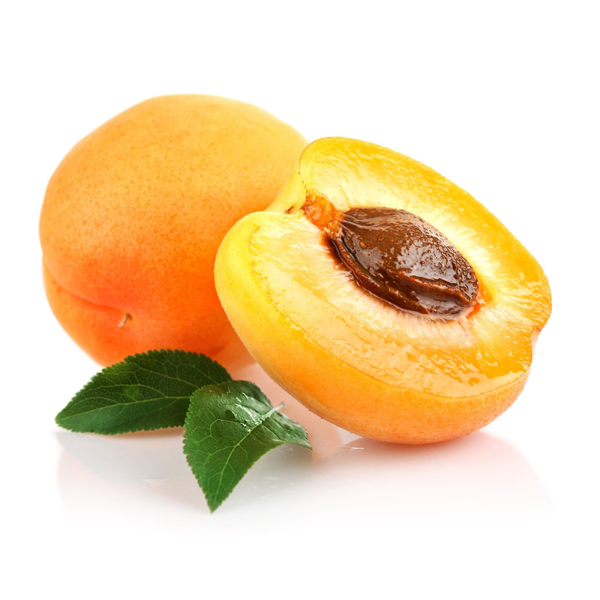 Apricot Fruit with Kernel